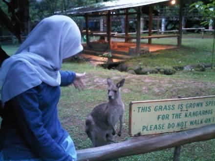 Mari ke kebun binatang :)