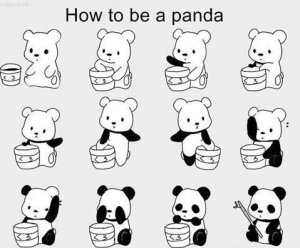 image taken from http://thenctimes.com/wp-content/uploads/2012/09/Pandas.png